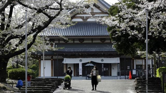 Japanischer Tempel. Menschen mit Maske. Blühende Bäume.