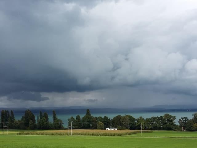 Die Wolken liegen tief und schwer. Das Wasser des Bodensees leuchtet türkisfarben.
