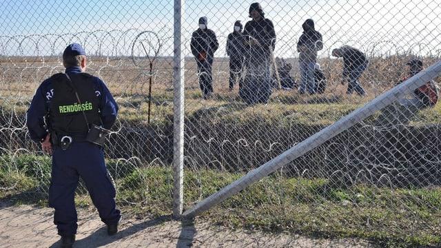 Ungarischer Bemater an Grenzzaun – dahinter sind Flüchtlinge zu sehen.