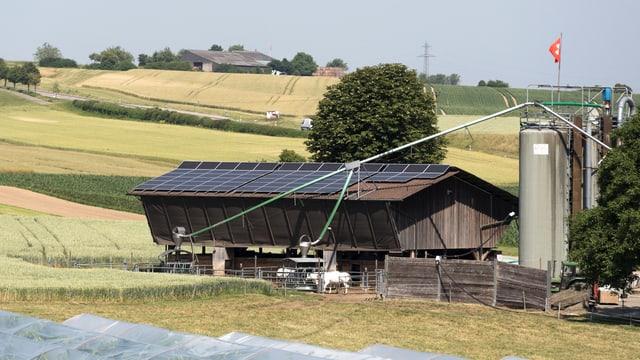 Bauernhof mit Silo und Schweizerfahne in Wallbach/Aargau