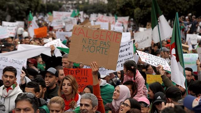 Maletg dals protests en l'Algeria