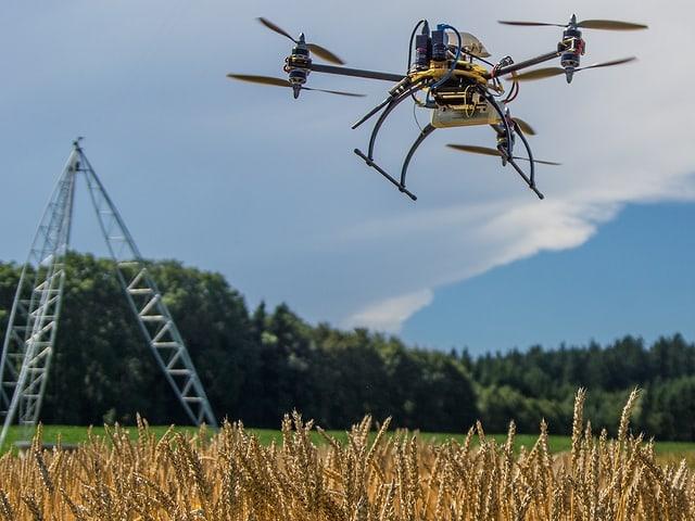 Eine Drohne über einem Weizenfeld