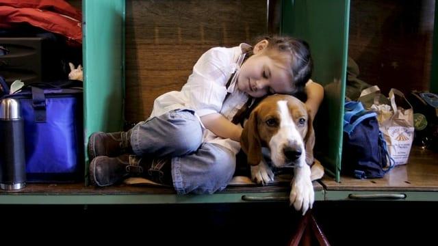 Ein Mädchen schläft an ihren Hund gekuschelt an einer Hundeshow in England.