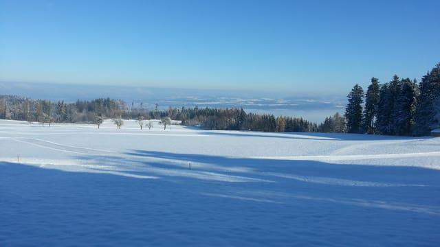 Verschneite Winterlandschaft auf dem Pfannenstiel.