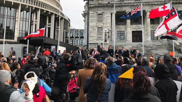 Hunderte Maori-Demonstranten vor dem Parlament