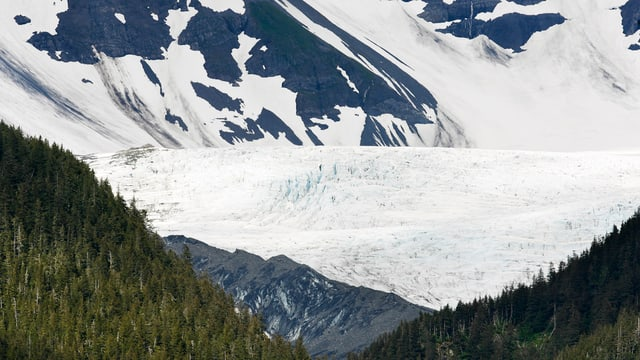 Der Billings-Gletscher nahe der Ortschaft Whittier in Alaska.