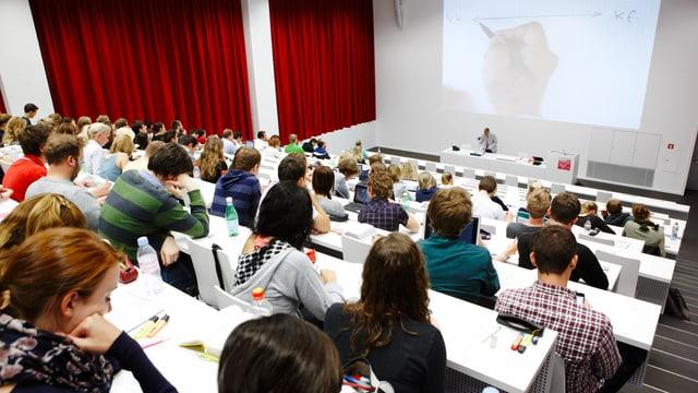 Ein Hörsaal sitzen Studenten in abgestuften Reihen.