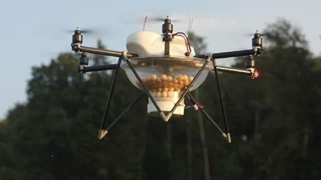 Drohne in der Natur