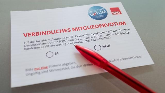 Der Abstimmungszettel.