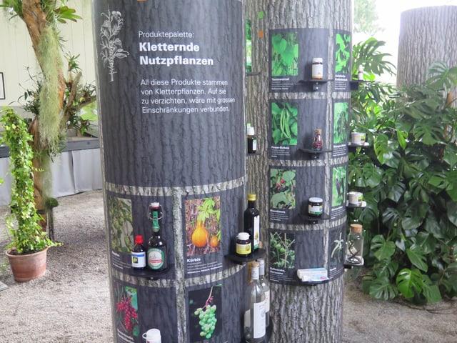 Ausstellung Botanischer Garten