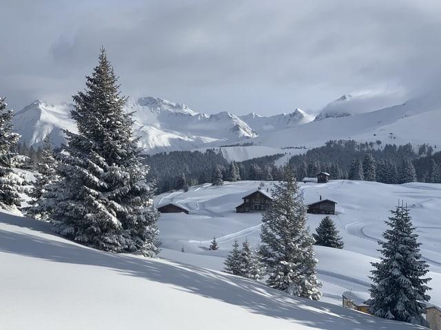 Die Langlaufloipe ist frisch präpariert, die Bäume und Hütten tragen eine dicke Schneedecke.