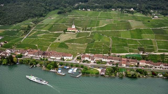 Luftaufnahme vom Bielersee-Dorf Ligerz.