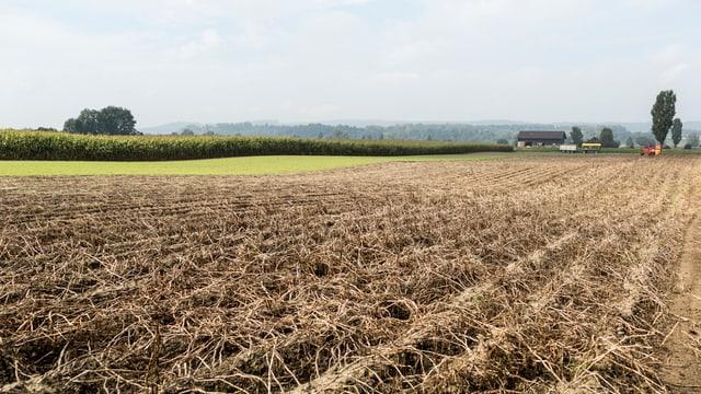 Landwirtschaft in der Schweiz.