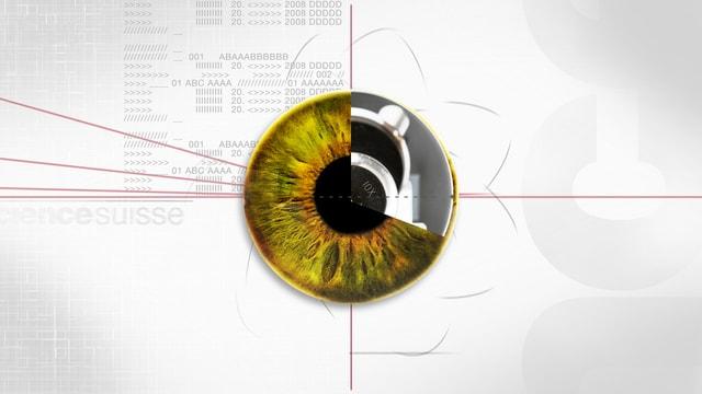 Ein vom Computer gezeichnetes Auge.