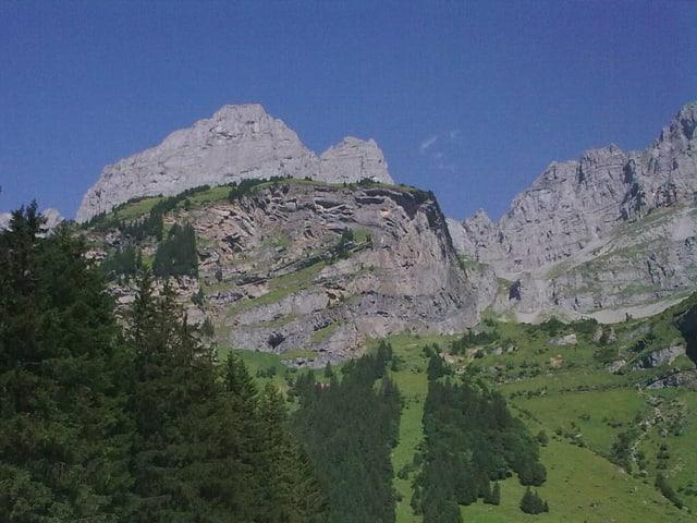 Blick auf eine Alp oberhalb des Urnerbodens.