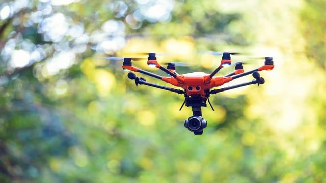Eine Drohne fliegt vor Bäumen