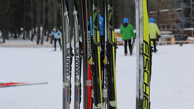 Quest ski ha betg si la dretga tschaira...