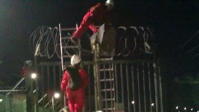 MItglieder von Greenpeace klettern über einen Zaun.