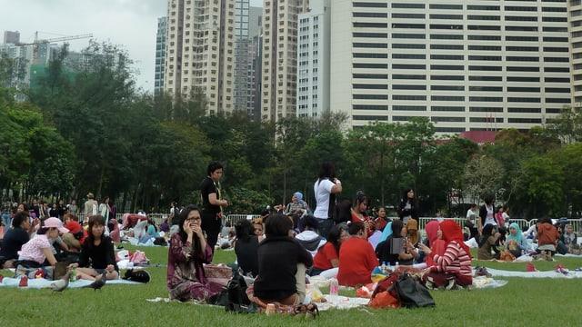Kleine Menschengruppen sitzen auf einer Wiese. Im Hintergrund sind Hochhäuser zu erkennen.