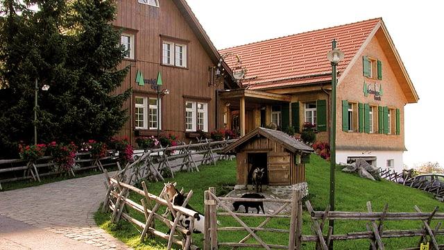 Video «Grossmutters Bauernhaus Schnuggebock in Teufen - Tag 2» abspielen