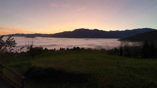 Blick über das noch mit Nebel gefüllte St. Galler Rheintal am Mittwochmorgen.