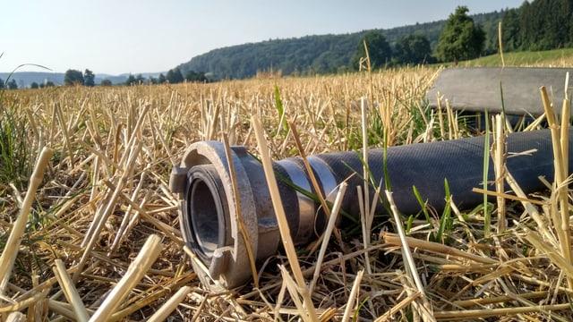 Ein Schlauch liegt auf einem Feld.