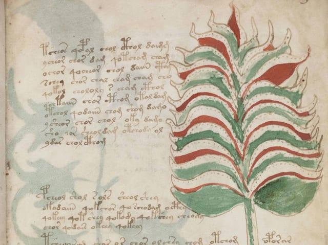 Eine Seite aus dem Voynich-Manuskript.