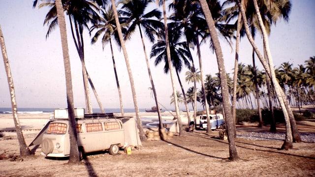 Ein VW-Bus, geparkt an einem Strand mit Palmen.