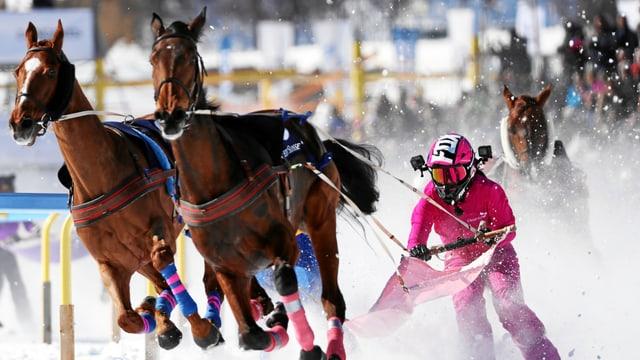 Video «Skikjöring in St. Moritz» abspielen