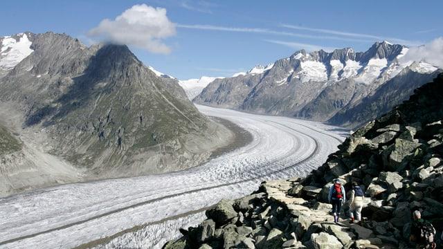 Cun ina lunghezza da 23 km è il glatscher da l'Aletsch il pli lung glatscher da l'Europa.