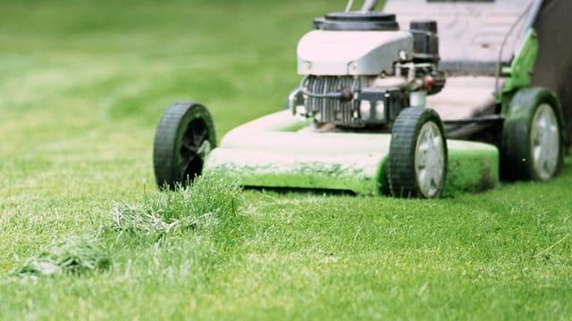 Rasenmäher auf einem Rasen.