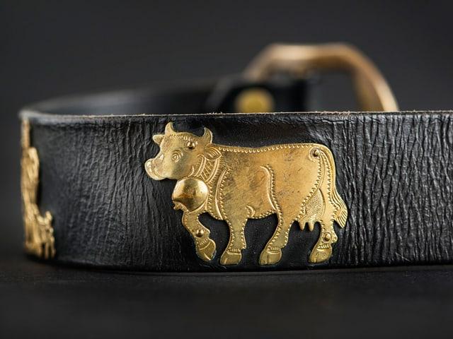 Nahaufnhame eines Ledergurts mit goldenen Kühen drauf.