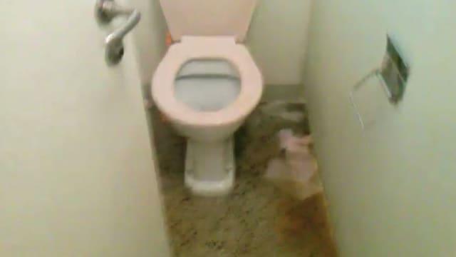 WC-Anlage mit Papier am Boden