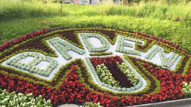 Der Schriftzug Baden mit Blumen geschrieben