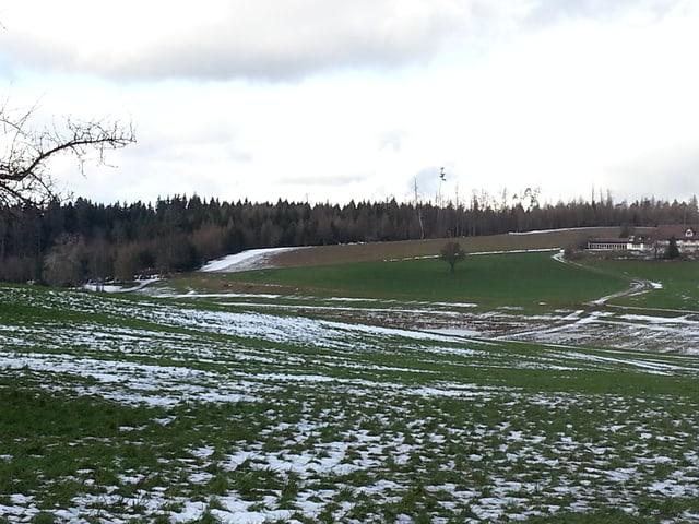 Dieselbe Landschaft, aber fast ohne Schnee und ohne Langläufer.