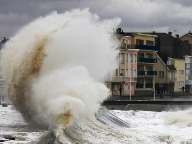 Küste mit hoher Welle.