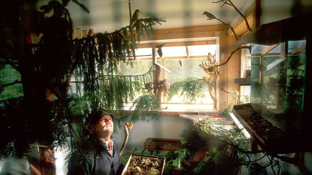 Ein Mann sitzt in einer Voliere und ist umgeben von einigen Vögeln.
