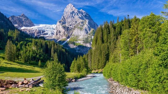 Grünes Bergtal mit Bach und markantem Berg in der Ferne mit Gletscher.