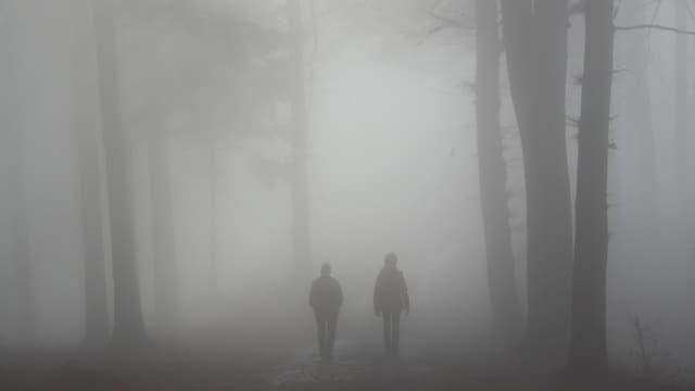Zwei Leute spazieren in dichtem Nebel durch einen Wald.