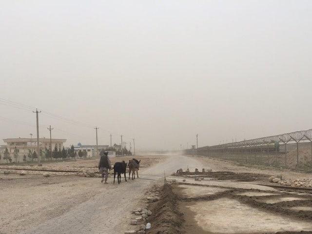 Grenzzaun in trister Wüstenlandschaft, daneben ein Mann mit zwei Eseln.