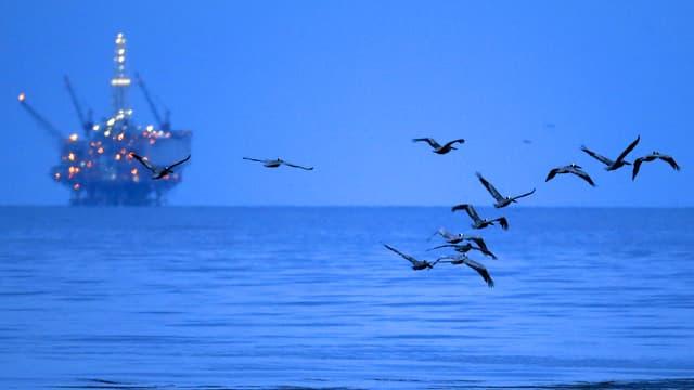 Aufnahme einer Ölplattform. Im Vordergrund fliegen ein paar einsame Möwen.