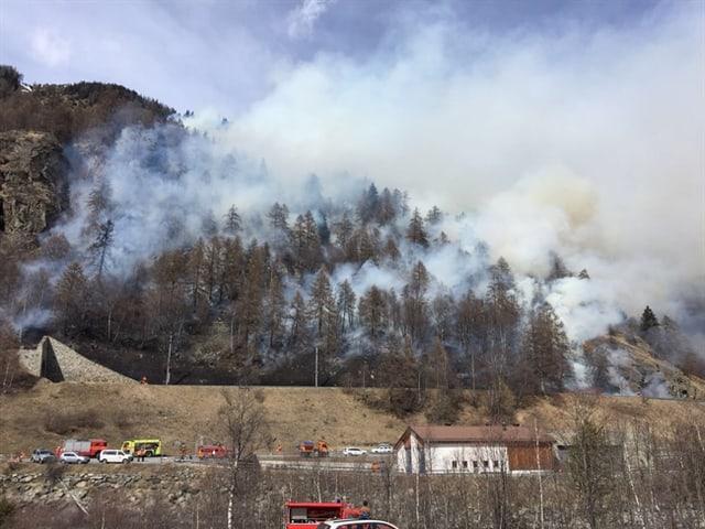 Rauch steigt aus einem Bergwald auf.