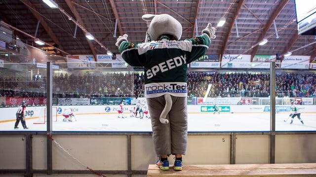 Speedy-Maskottchen
