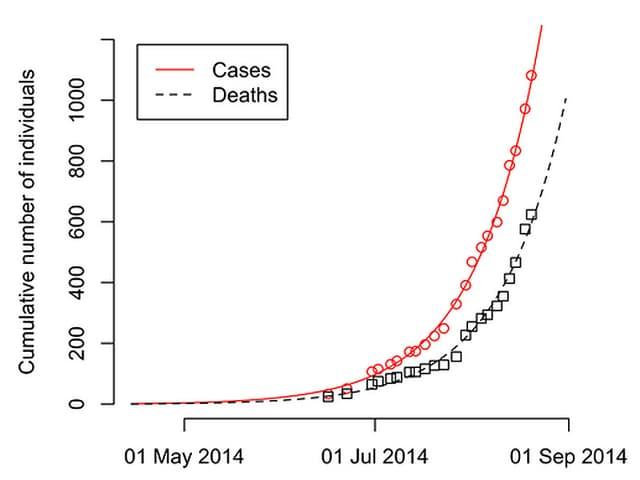 Zwei Kurven zeigen die Entwicklung der Zahl der Ebola-Infizierten und der Todesopfer in Liberia.