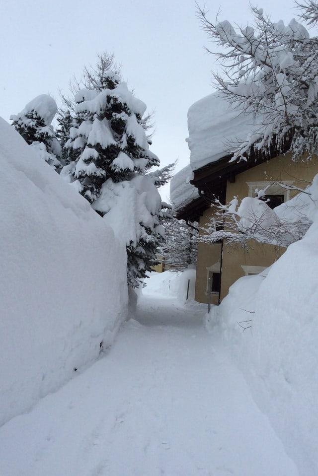 Rekordschneemengen gab es Ende Januar in Maloja.