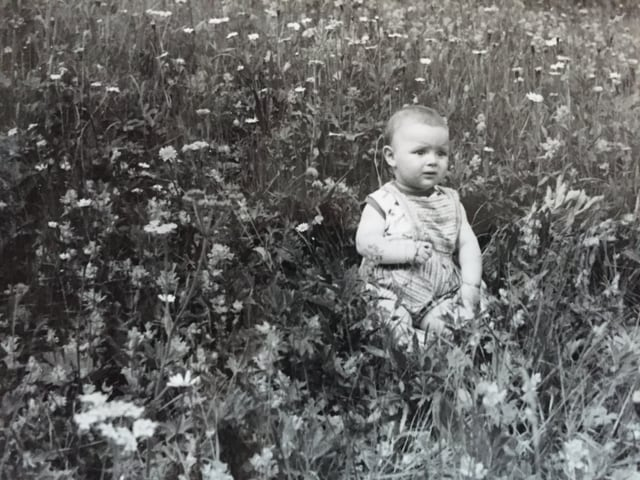 Ein Kleinkind sitzt mit einem etwas verunsicherten Gesichtsausdruck mitten in einer grossen Wiese.