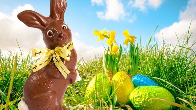 Bildcollage mit einem Osterhasen aus Schokolade, der auf einer grünen Wiese neben Osterglocken steht.