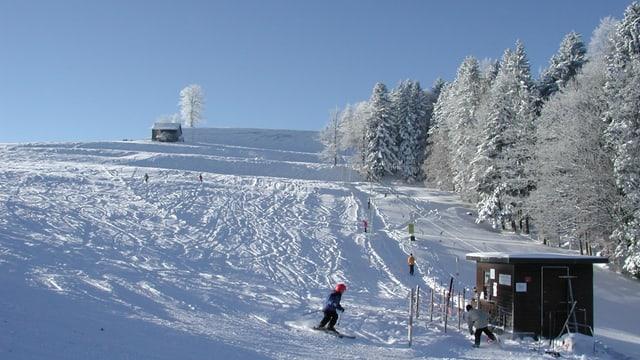 Skipiste im Zürcher Oberland. Blauer Himmel, verschneiter Wald.