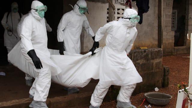 Ebola – wer stoppt die Seuche?