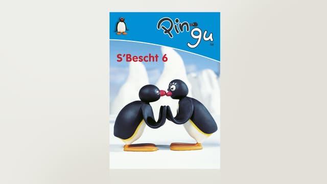 Pingu 6